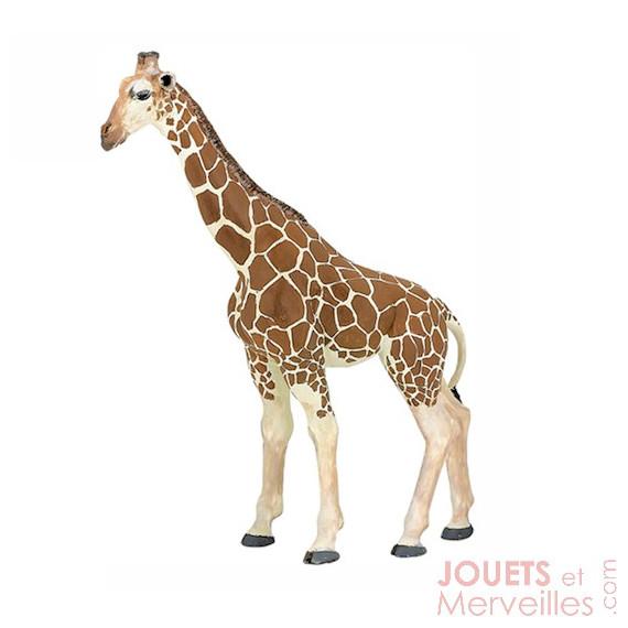 Girafe PAPO 50096
