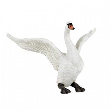 Cygne blanc PAPO 50115