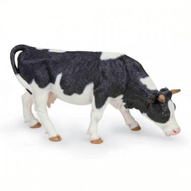 Vache noire et blanche broutant, PAPO 51150