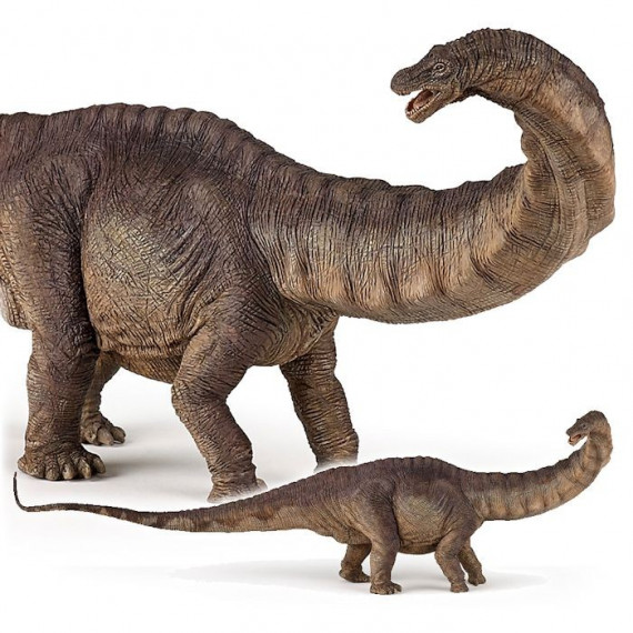 Apatosaure, dinosaure PAPO 55039