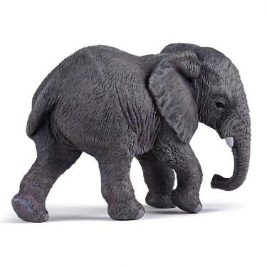 Jeune éléphant d'Afrique PAPO 50169