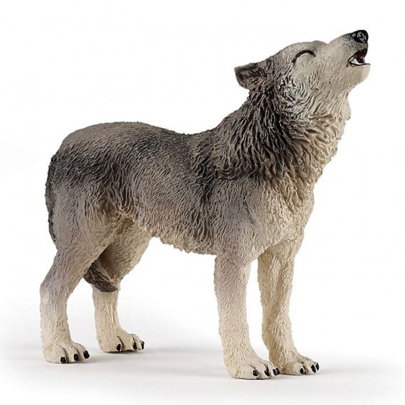 Loup hurlant PAPO 50171