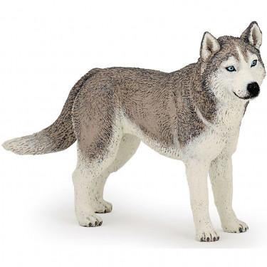 Husky de Sibérie, figurine PAPO 54035
