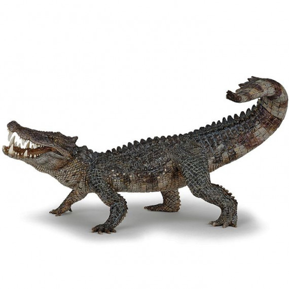 Kaprosuchus dinosaure PAPO 55056