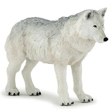 Loup polaire PAPO 50195