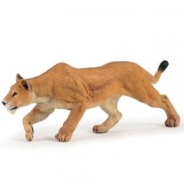 Lionne chassant PAPO 50251