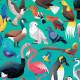 Puzzle '36 oiseaux' 100 pcs CROCODILE CREEK