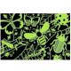 Puzzle qui Brille dans le Noir 'Incroyables insectes' 100 pcs Mudpuppy
