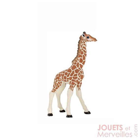 Girafon PAPO 50100