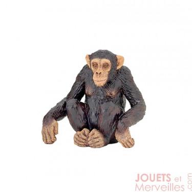 Chimpanzé PAPO 50106