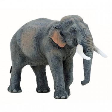 Eléphant d'Asie PAPO 50131
