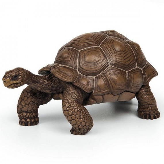 Tortue des Galapagos PAPO 50161