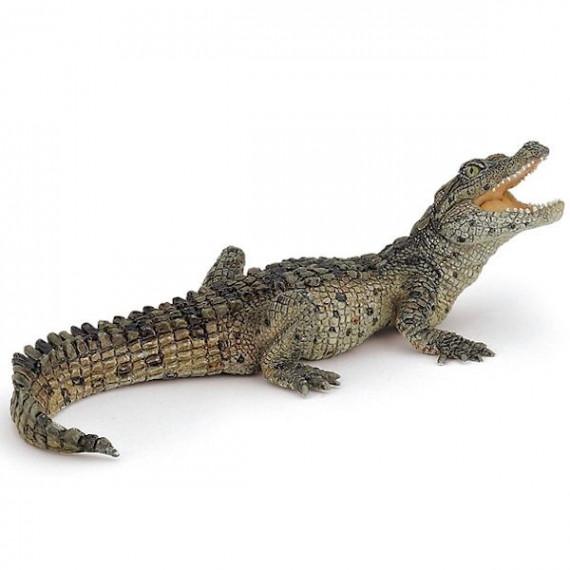 Bébé crocodile PAPO 50137