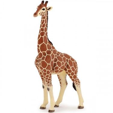 Girafe mâle PAPO 50149