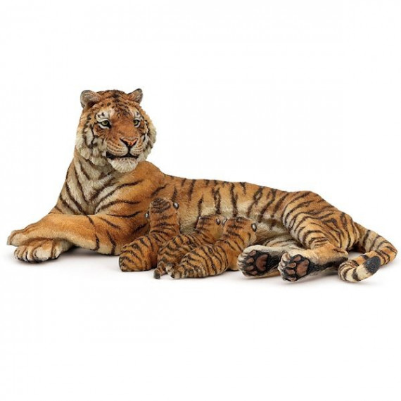 Tigresse couchée allaitant PAPO 50156