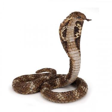 Cobra royal PAPO 50164